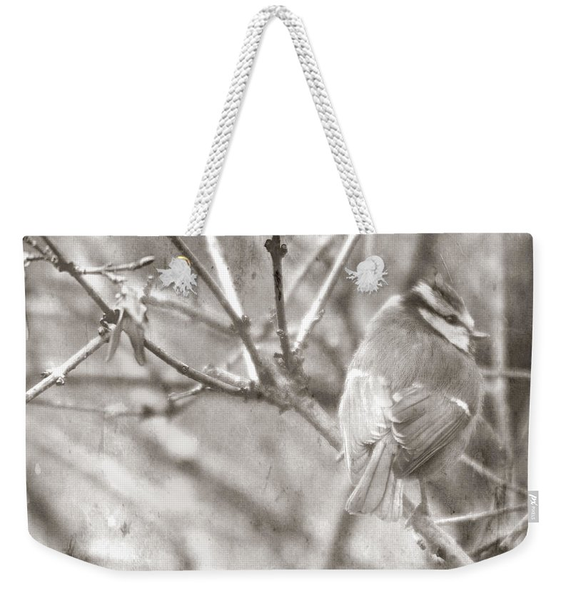 Blue Tit Weekender Tote Bag featuring the photograph The Winter Time by Angel Tarantella