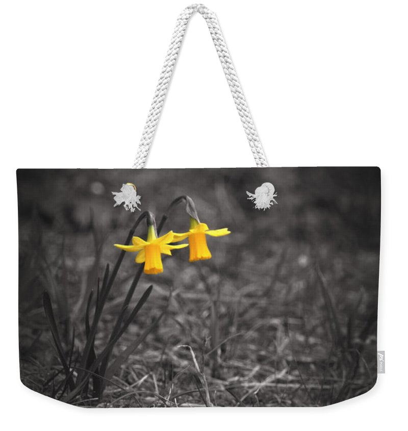 Selective Colors Weekender Tote Bag featuring the photograph The World Around Us by Rachel Mirror