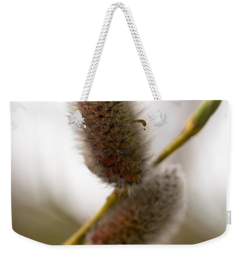 Seitseminen Weekender Tote Bag featuring the photograph There Is Someone by Jouko Lehto