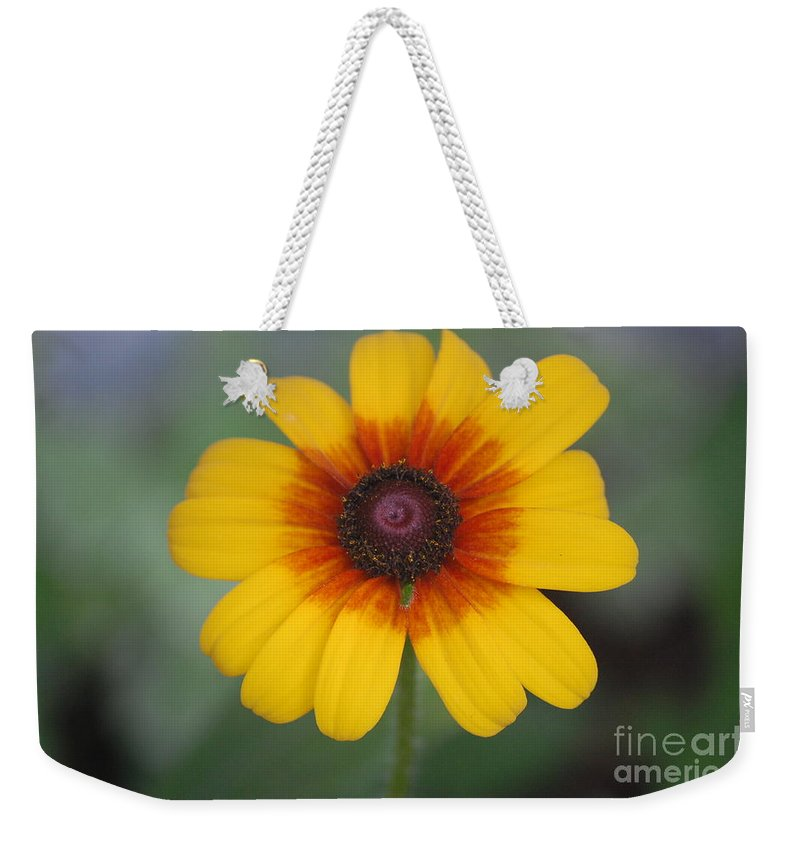 Landscape Weekender Tote Bag featuring the photograph They Call Me Mellow Yellow. by David Lane