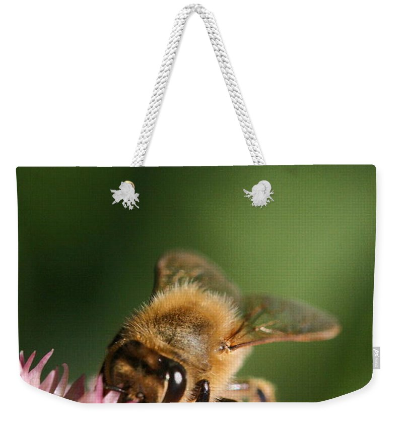 Bee Weekender Tote Bag featuring the photograph Thirsty For Nectar by Angela Rath