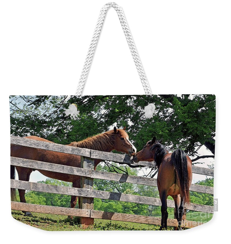 Horse Weekender Tote Bag featuring the photograph This Is Love by Lydia Holly