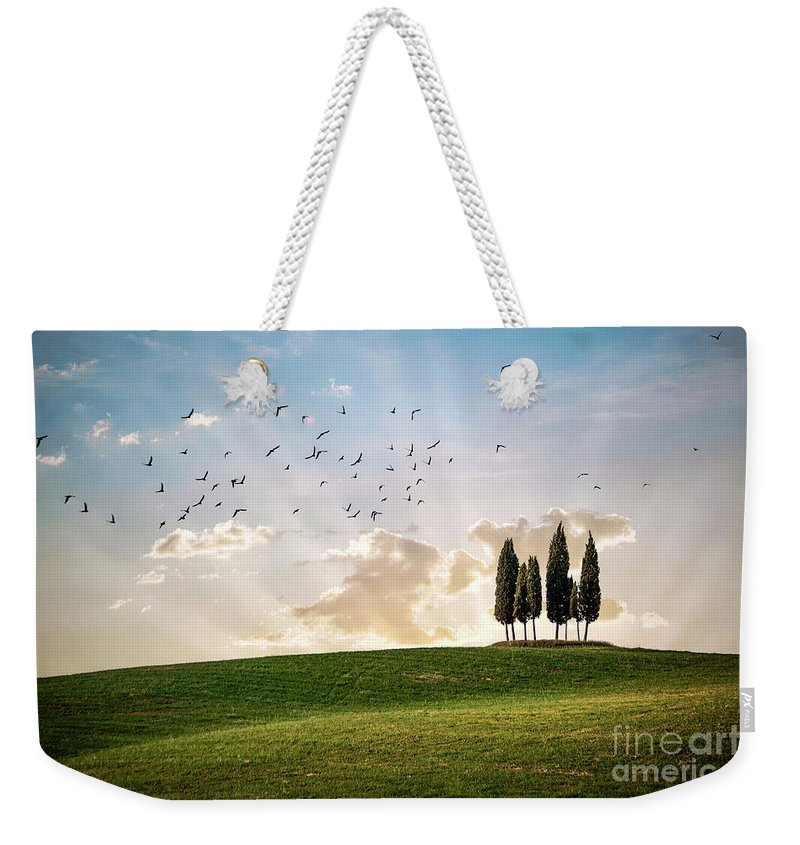 Kremsdorf Weekender Tote Bag featuring the photograph This Majestic Land by Evelina Kremsdorf