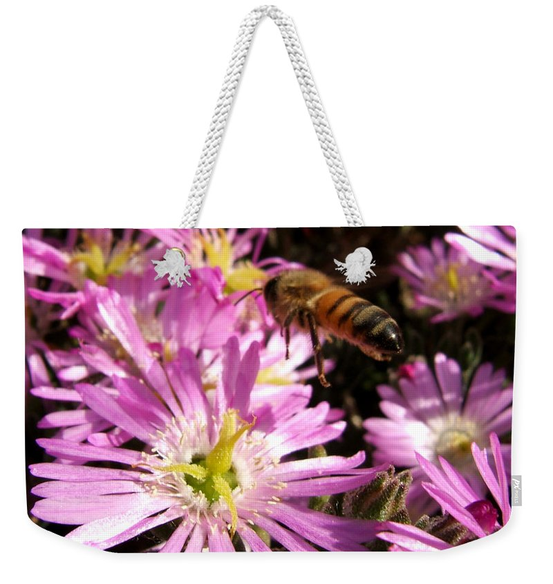 Bee Weekender Tote Bag featuring the photograph This Will Do by Chris Brannen