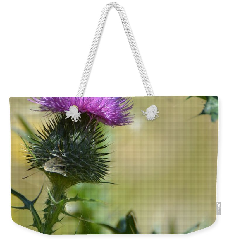 Thistle Weekender Tote Bag featuring the photograph Thistle Spikes by Robin White