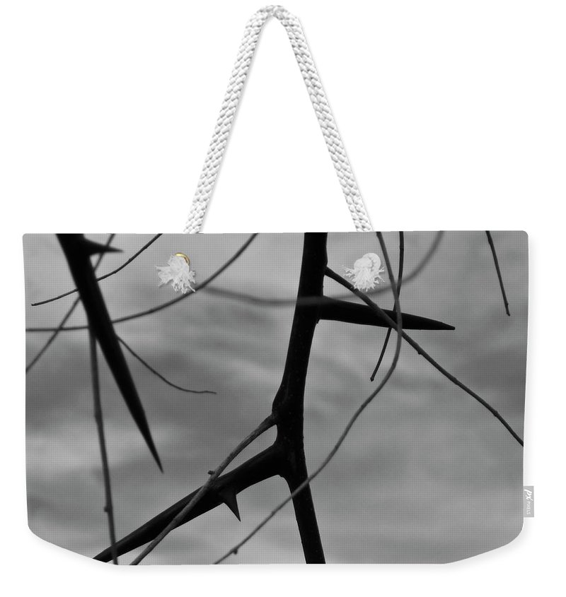 Thorns Weekender Tote Bag featuring the photograph Thorns In Silouette by Angus Hooper Iii