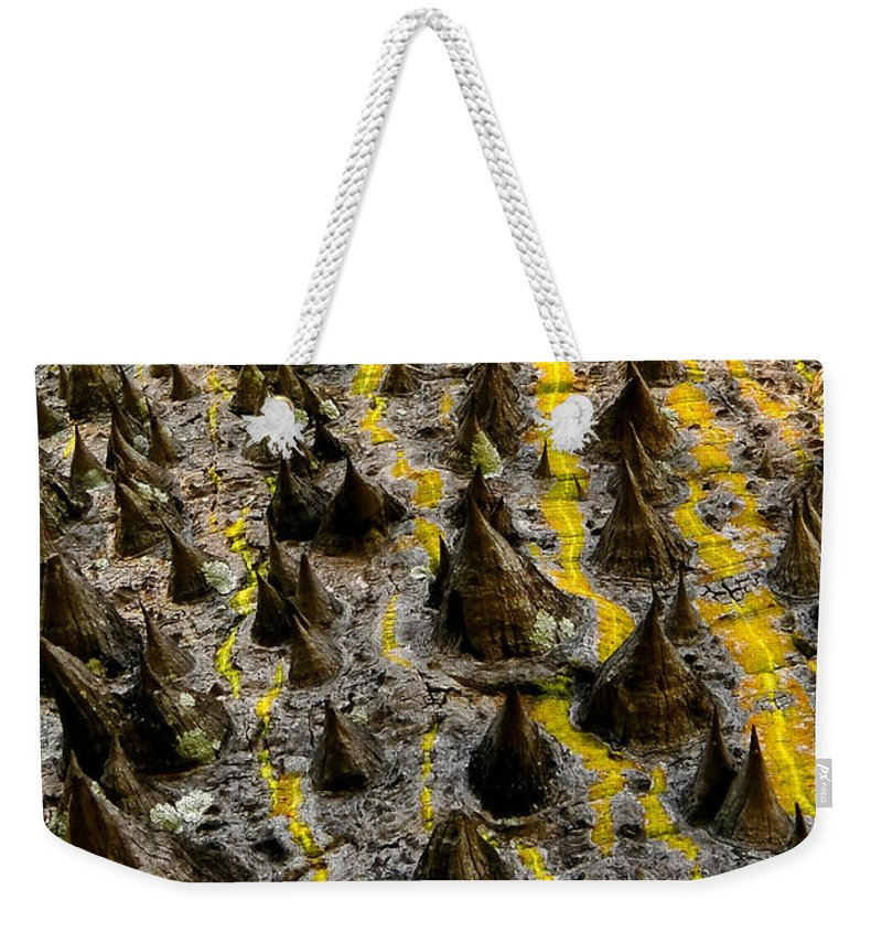 White Floss Silk Tree Weekender Tote Bag featuring the photograph Thorns Of Silk by David Lee Thompson