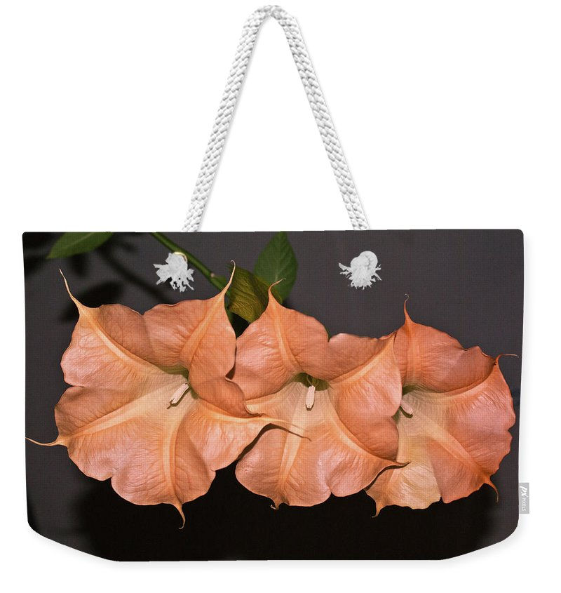 Three Weekender Tote Bag featuring the photograph Three Angels by Douglas Barnett