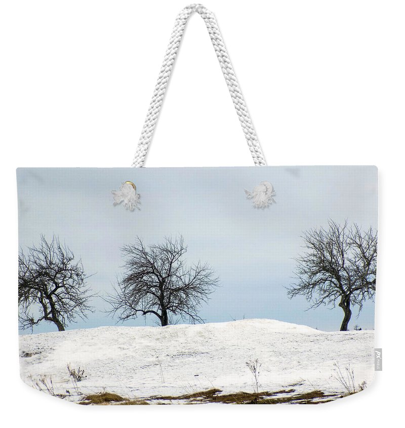 Apples Weekender Tote Bag featuring the photograph Three Apples by William Tasker