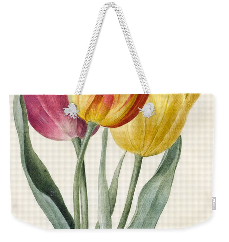 Tulip Weekender Tote Bag featuring the painting Three Lily Tulips by Louise D'Orleans