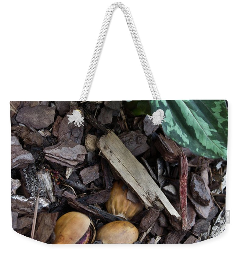 Trillium Weekender Tote Bag featuring the photograph Three Nuts For A Trillium by Douglas Barnett
