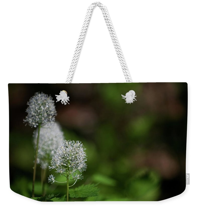 macro Photography Weekender Tote Bag featuring the photograph Three Of A Kind by Paul Mangold