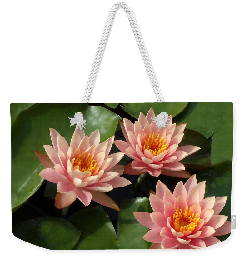 Water Lilies Weekender Tote Bag featuring the photograph Three Pink Water Lilies by Laurel Smith