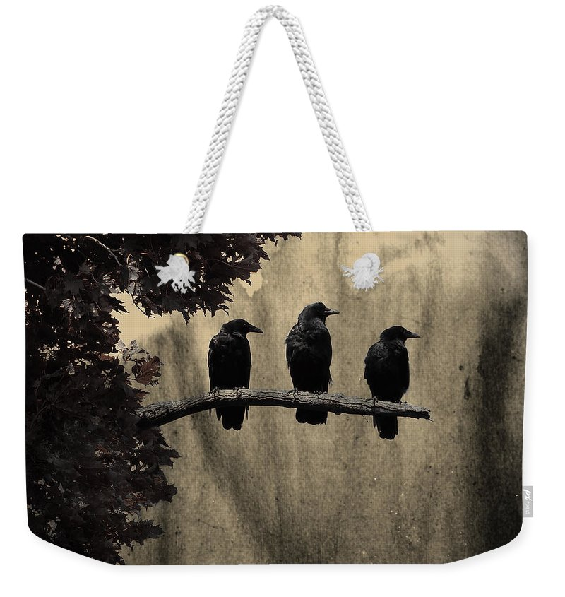 Dark Weekender Tote Bag featuring the photograph Three Ravens Branch Out by Gothicrow Images