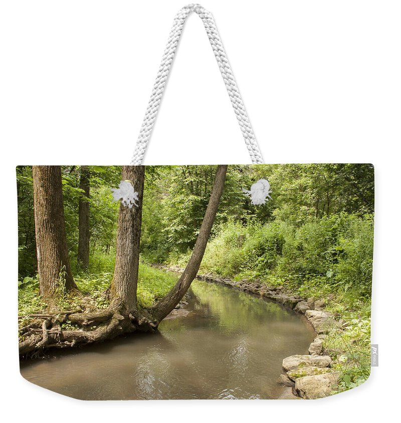 Hobbs Woods Weekender Tote Bag featuring the photograph Three Sisters by Dawn Braun