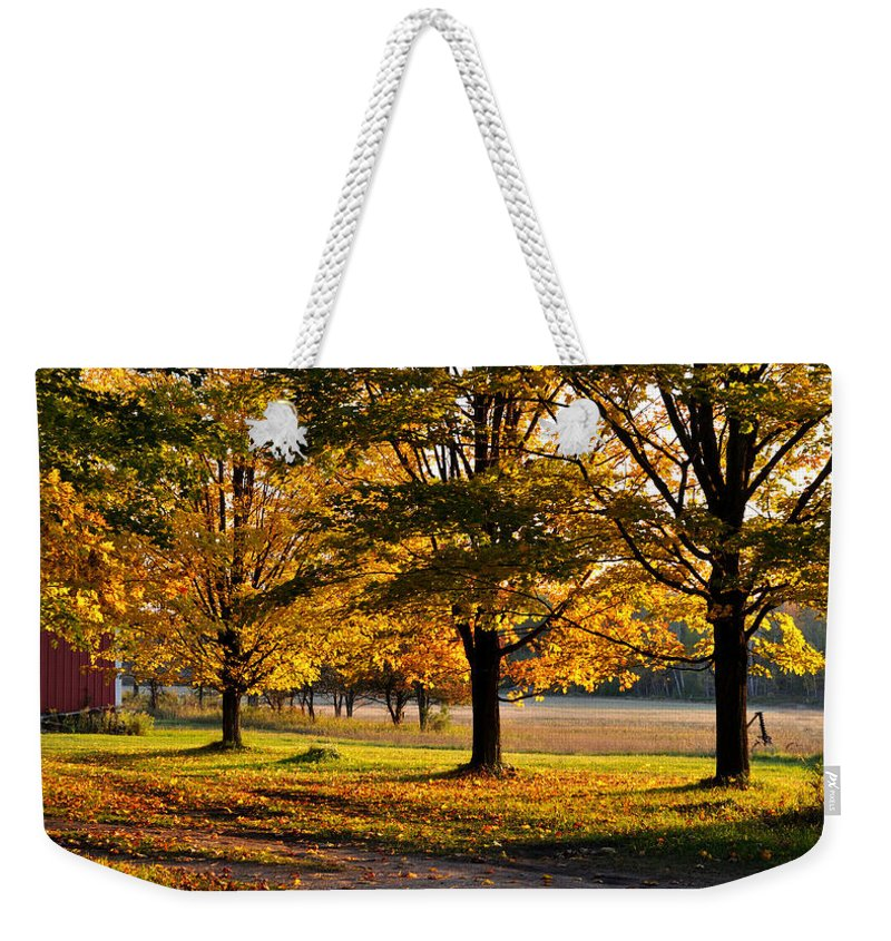 Fall Weekender Tote Bag featuring the photograph Three Sisters by Tim Nyberg