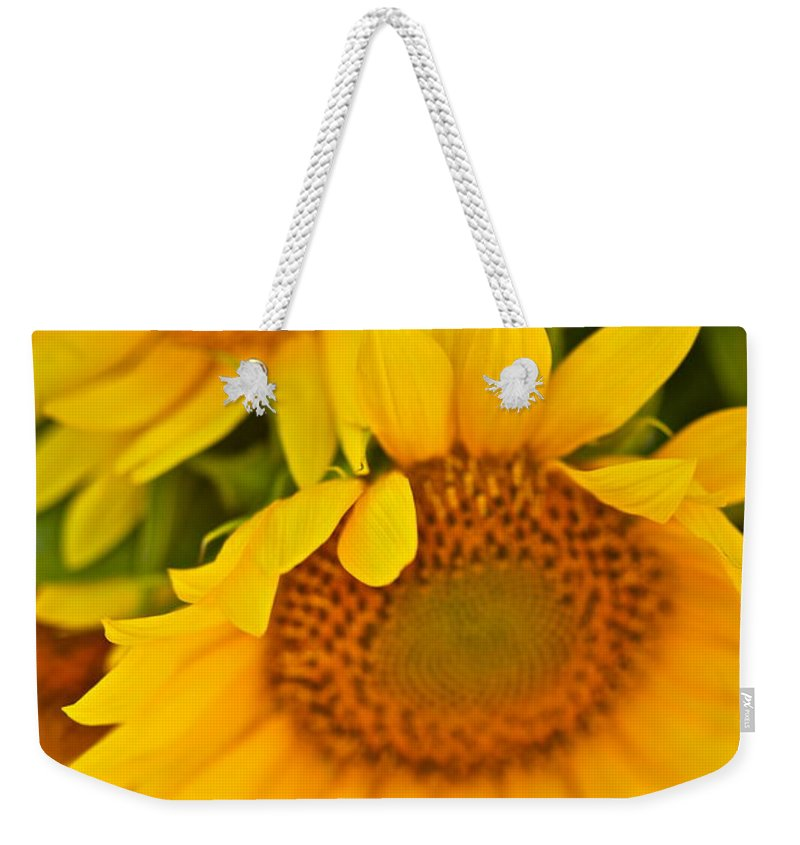 Yellow Weekender Tote Bag featuring the photograph Three Sunflowers by Nadine Rippelmeyer