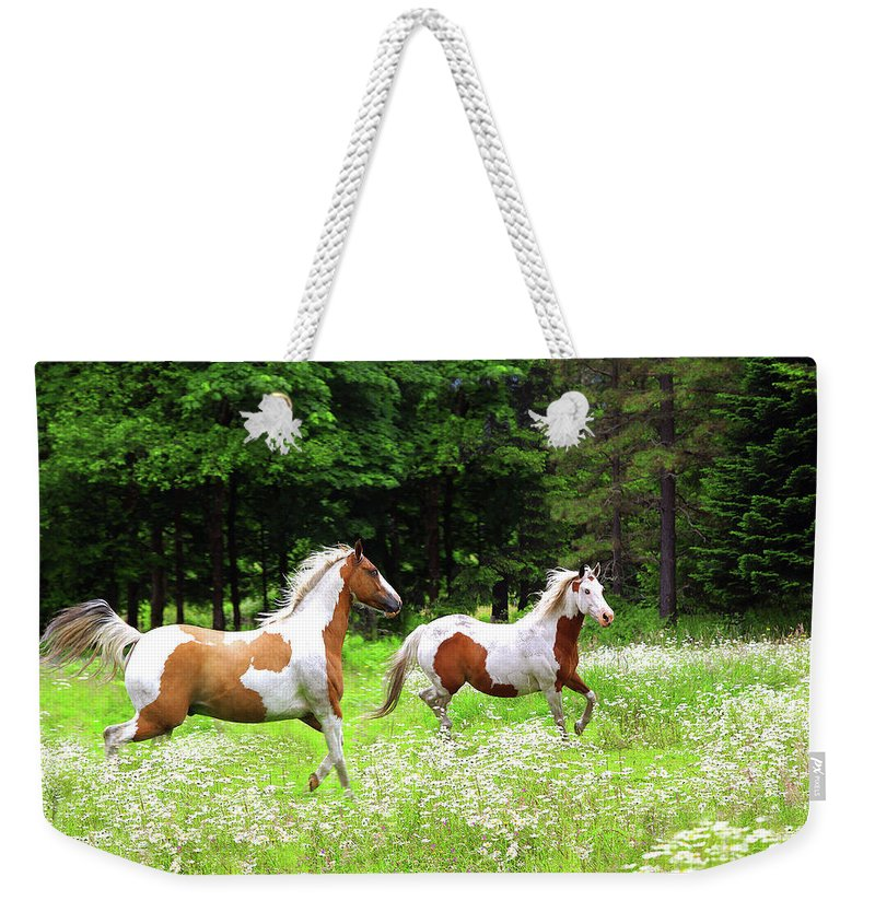 Paints Weekender Tote Bag featuring the photograph Through The Field by Don Schimmel