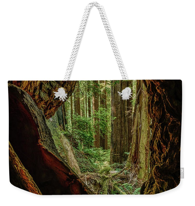 Charlie Choc Weekender Tote Bag featuring the photograph Through The Knothole by Charlie Choc