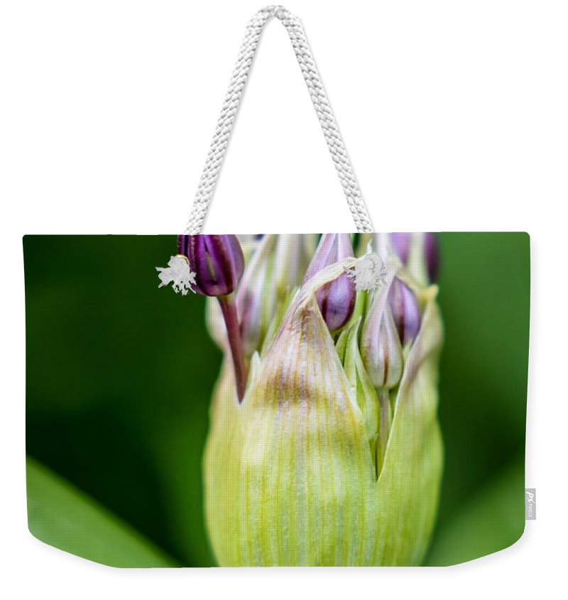 Nature Weekender Tote Bag featuring the photograph Through The Skin by Sebastiano Secondi