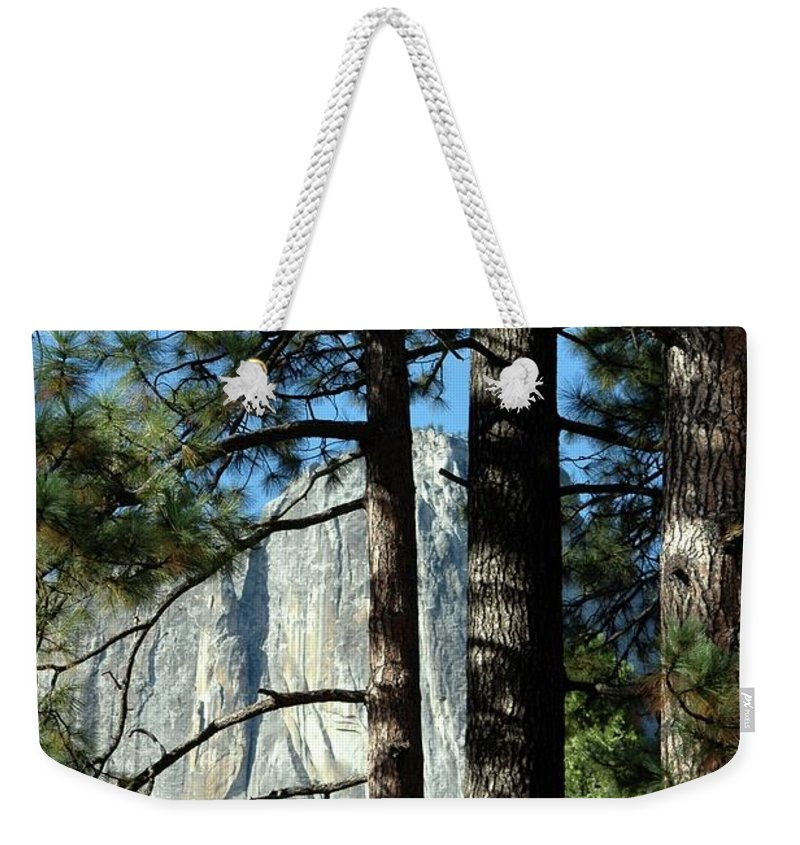 Trees Weekender Tote Bag featuring the photograph Through The Trees by Kathleen Struckle
