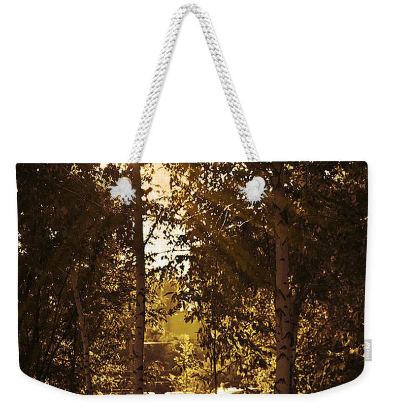 Art Weekender Tote Bag featuring the photograph Through The Trees by Svetlana Sewell