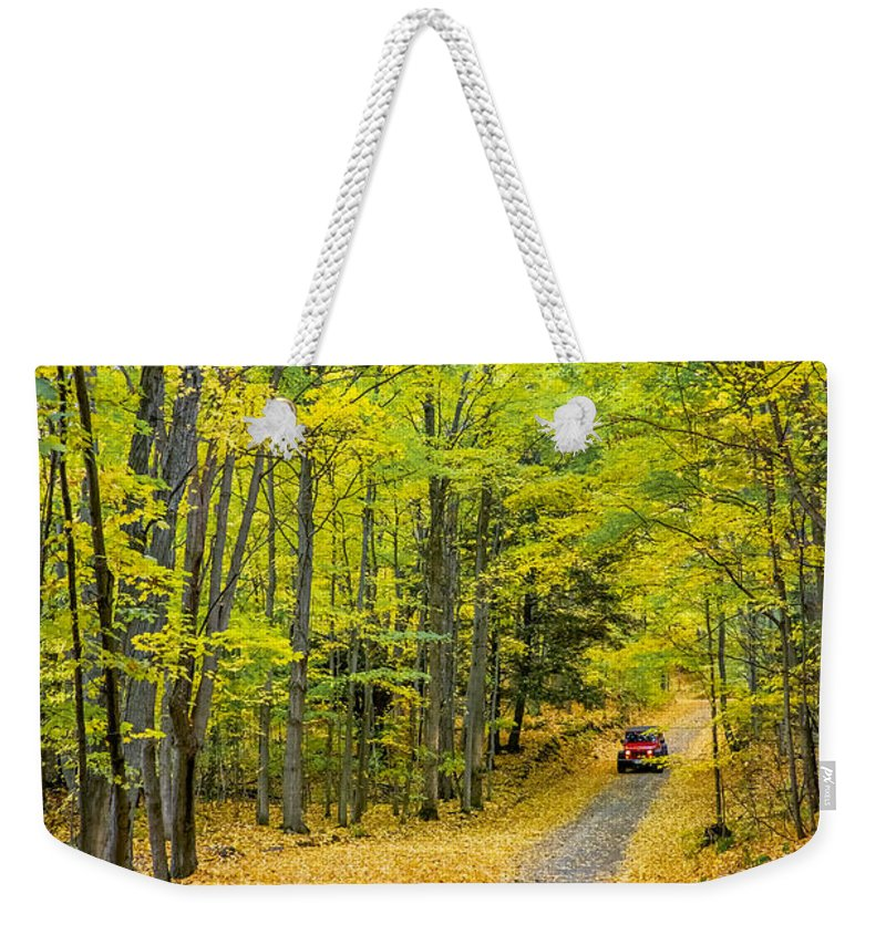 Steve Harrington Weekender Tote Bag featuring the photograph Through Yellow Woods 2 by Steve Harrington