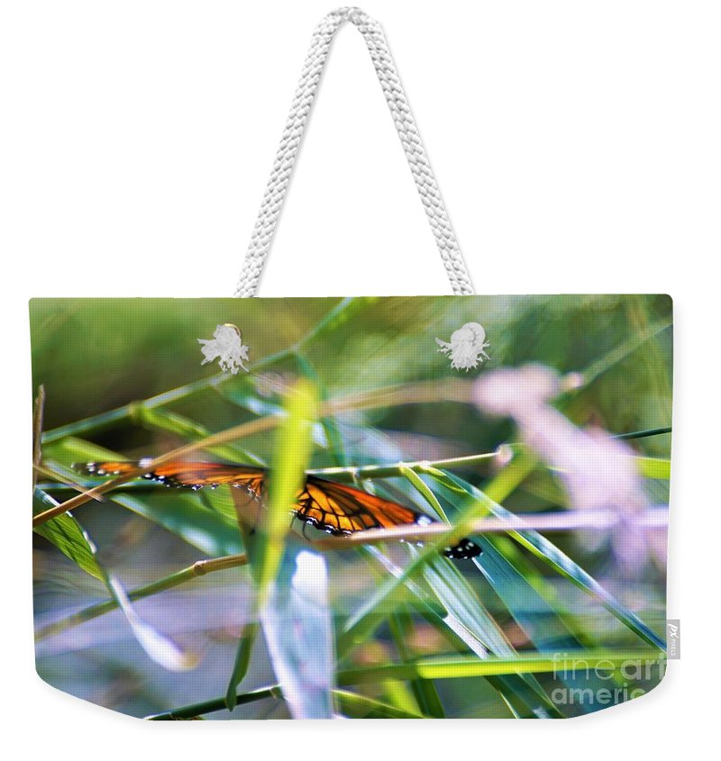 Butterflies Weekender Tote Bag featuring the photograph Thru The Leaves by Merle Grenz