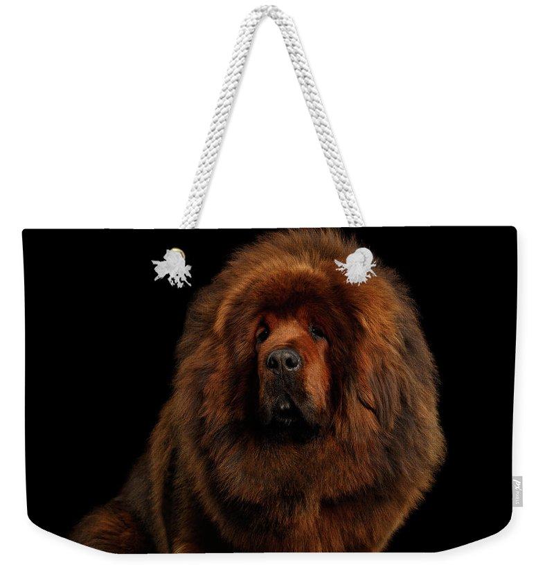 Mastiff Weekender Tote Bags
