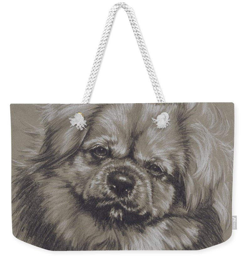 Purebred Weekender Tote Bag featuring the drawing Tibetan Spaniel by Barbara Keith
