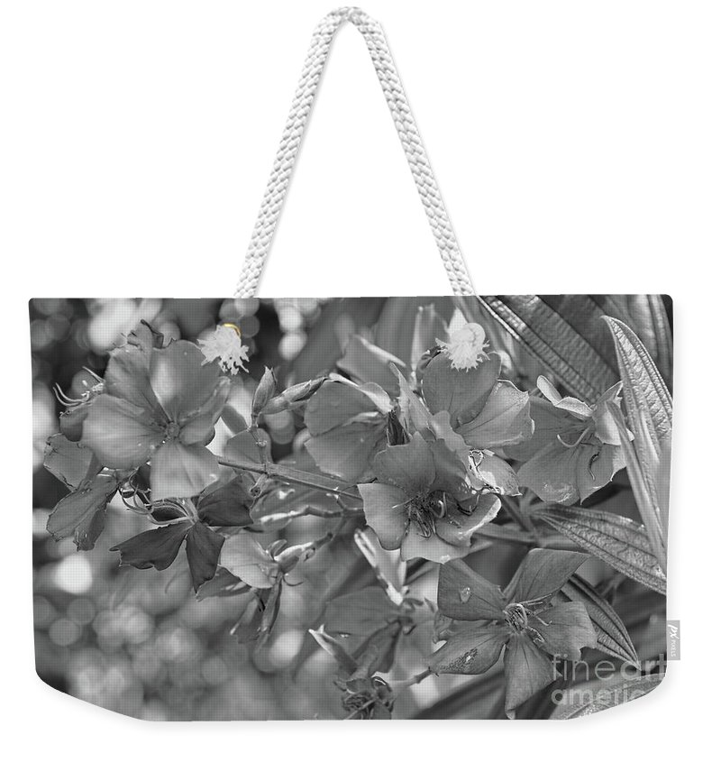 Tibouchina Weekender Tote Bag featuring the photograph Tibouchina In Black And White by Olga Hamilton