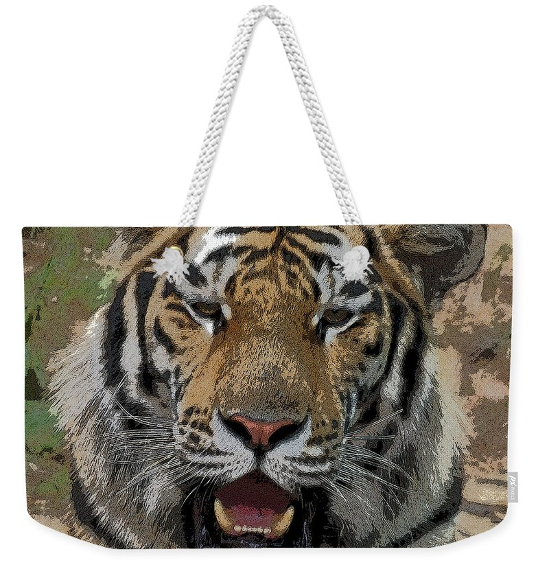 Tiger Weekender Tote Bag featuring the photograph Tiger Abstract by Ernie Echols