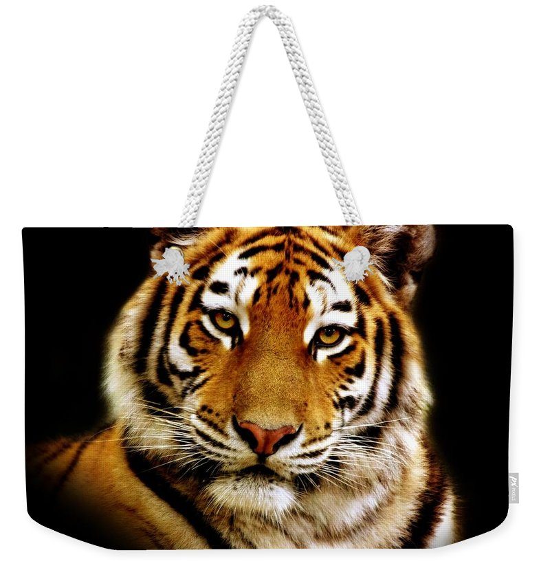 Wildlife Weekender Tote Bag featuring the photograph Tiger by Jacky Gerritsen
