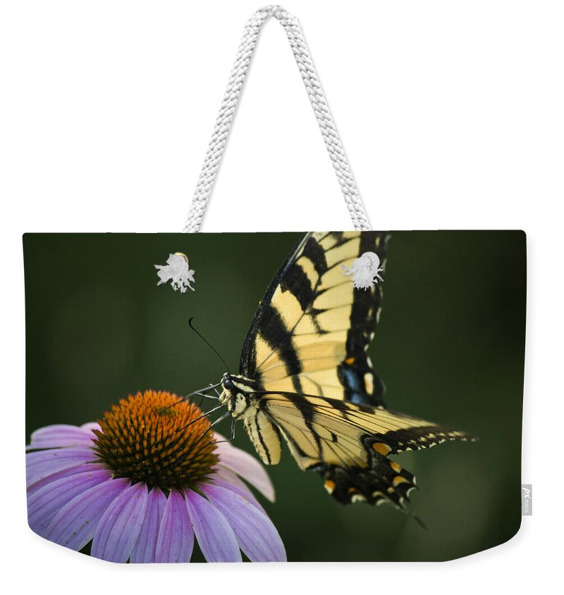 Butterfly Weekender Tote Bag featuring the photograph Tiger Swallowtail 1 by Teresa Mucha