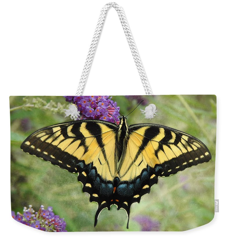 Butterflies Weekender Tote Bag featuring the photograph Tiger Swallowtail by Fran J Scott