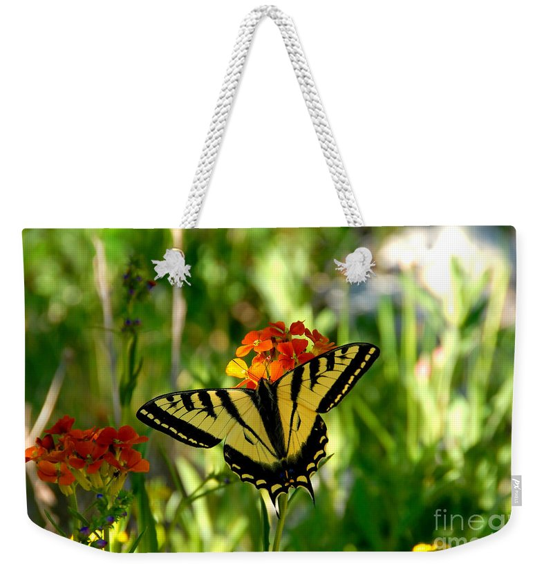 Tiger Tail Butterfly Weekender Tote Bag featuring the photograph Tiger Tail Beauty by David Lee Thompson