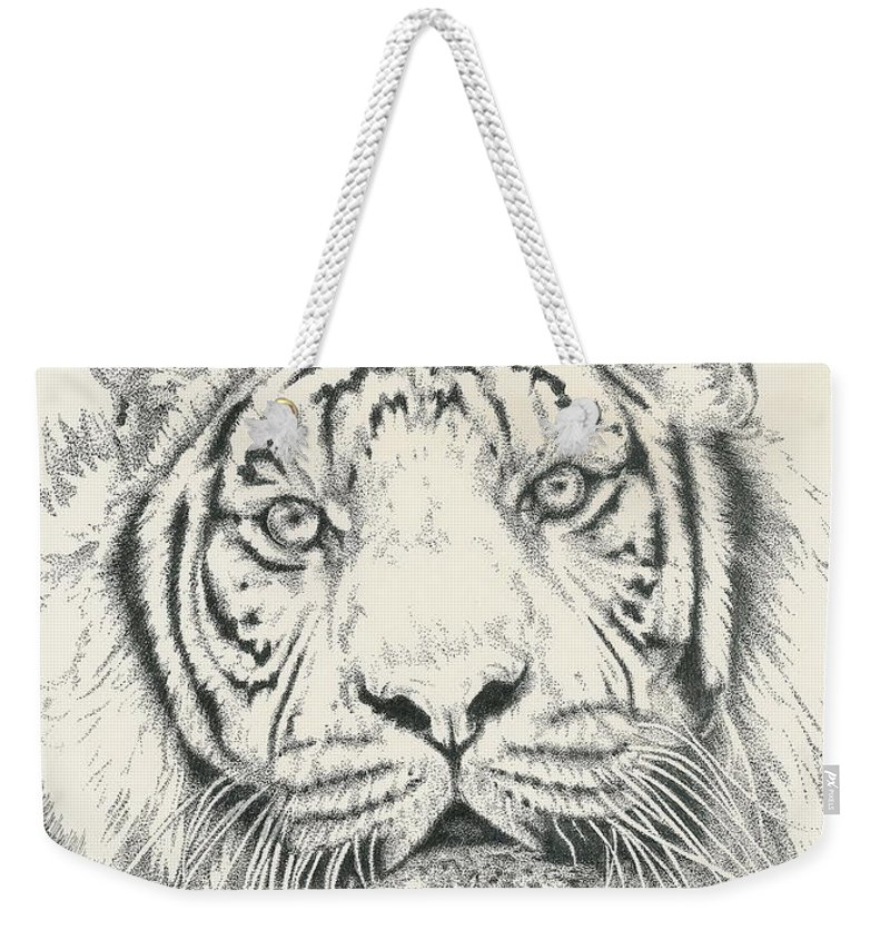 Tiger Weekender Tote Bag featuring the drawing Tigerlily by Barbara Keith