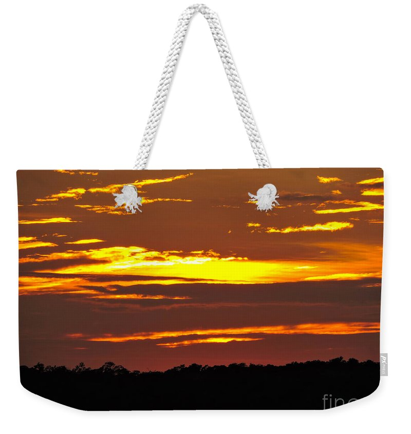Sunlight Weekender Tote Bag featuring the photograph Tigris by Marilee Noland