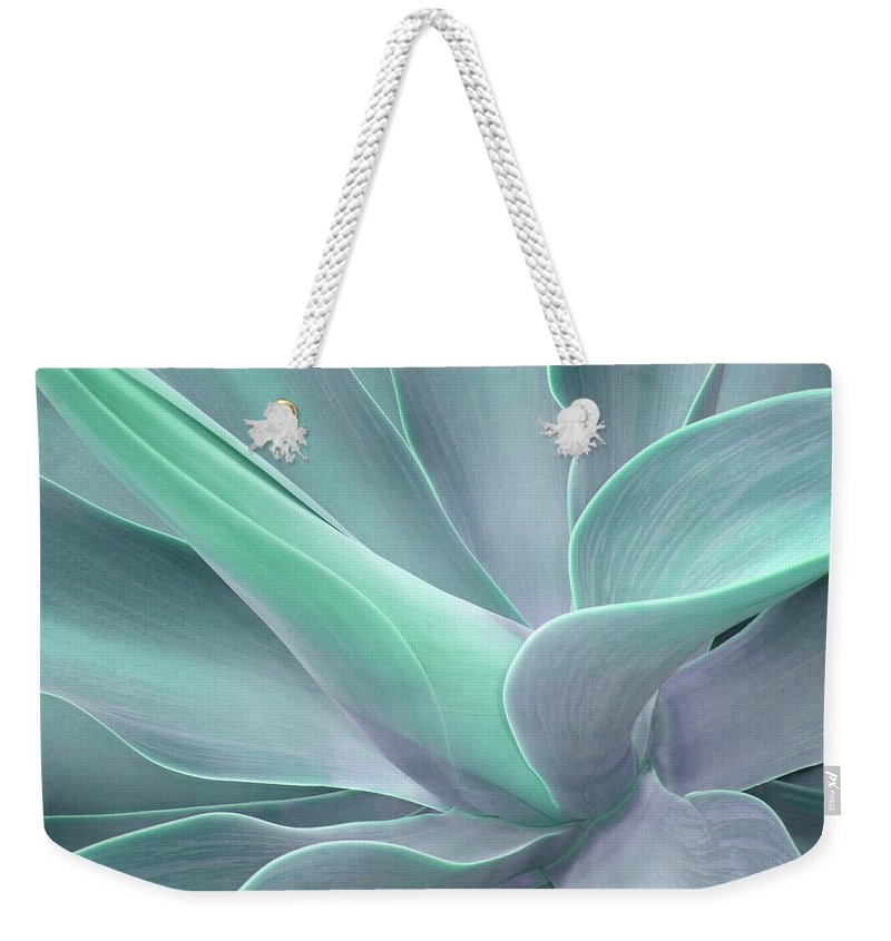 Agave Weekender Tote Bag featuring the photograph Tinted Agave Attenuata Abstract by Bel Menpes