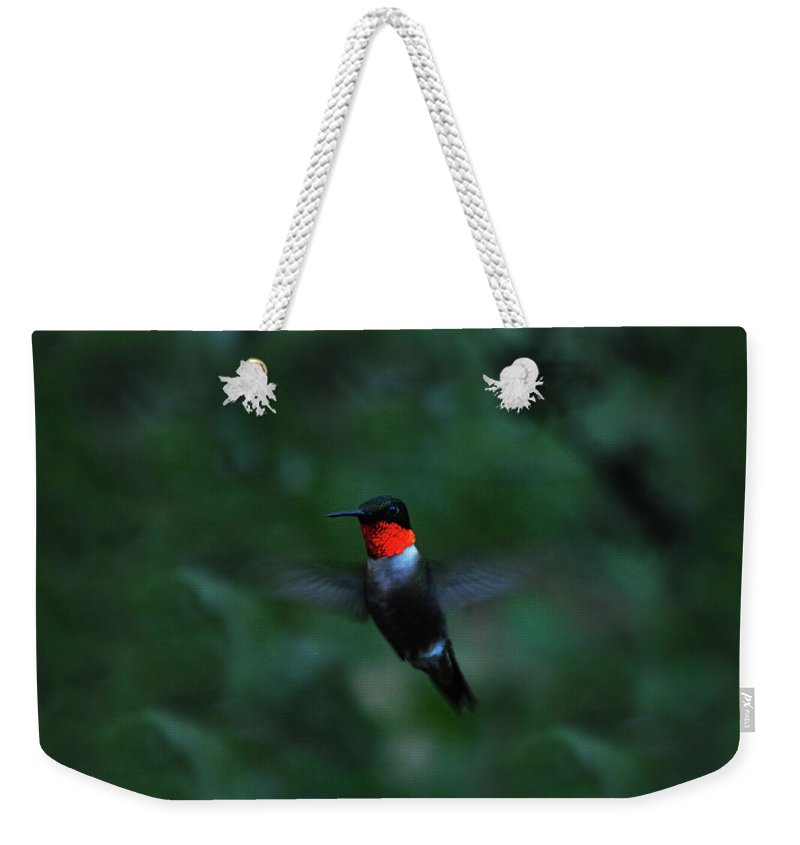 Hummingbird Weekender Tote Bag featuring the photograph Tiny Flier by Lori Tambakis