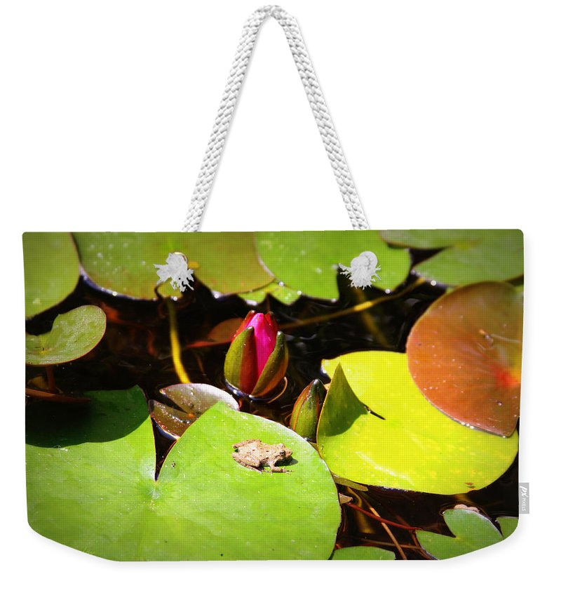 Frog Weekender Tote Bag featuring the photograph Tiny Frog by Tina Meador