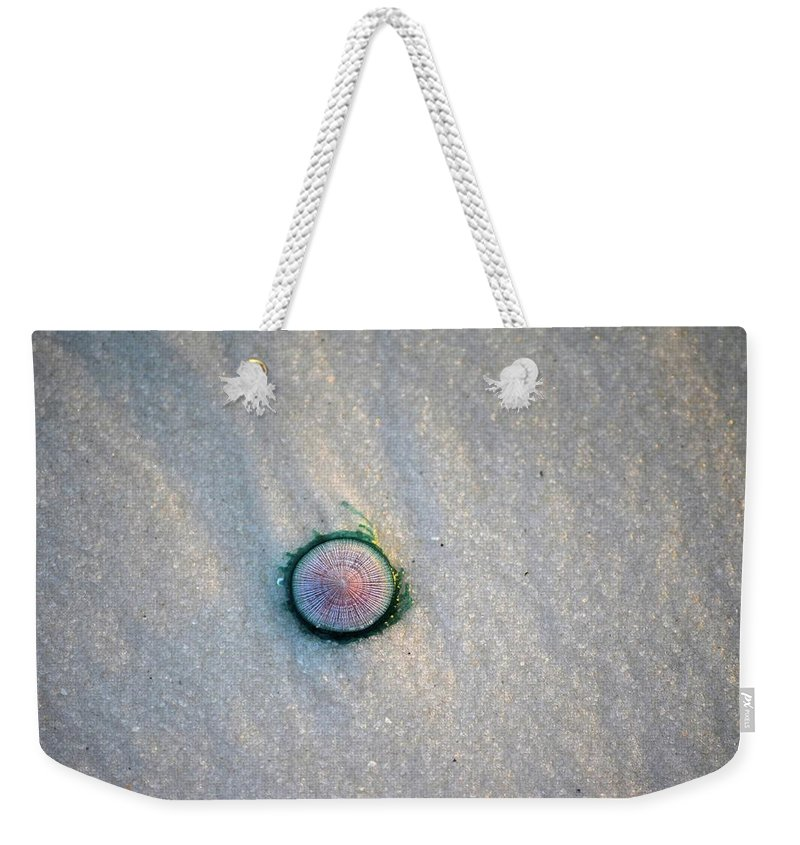 Sand Weekender Tote Bag featuring the photograph Tiny Jellyfish by Tamra Lockard