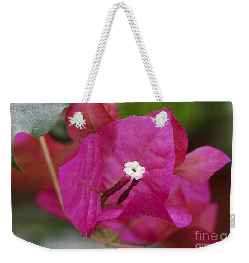Weekender Tote Bag featuring the photograph Tiny Little White Flower by Deborah Benoit