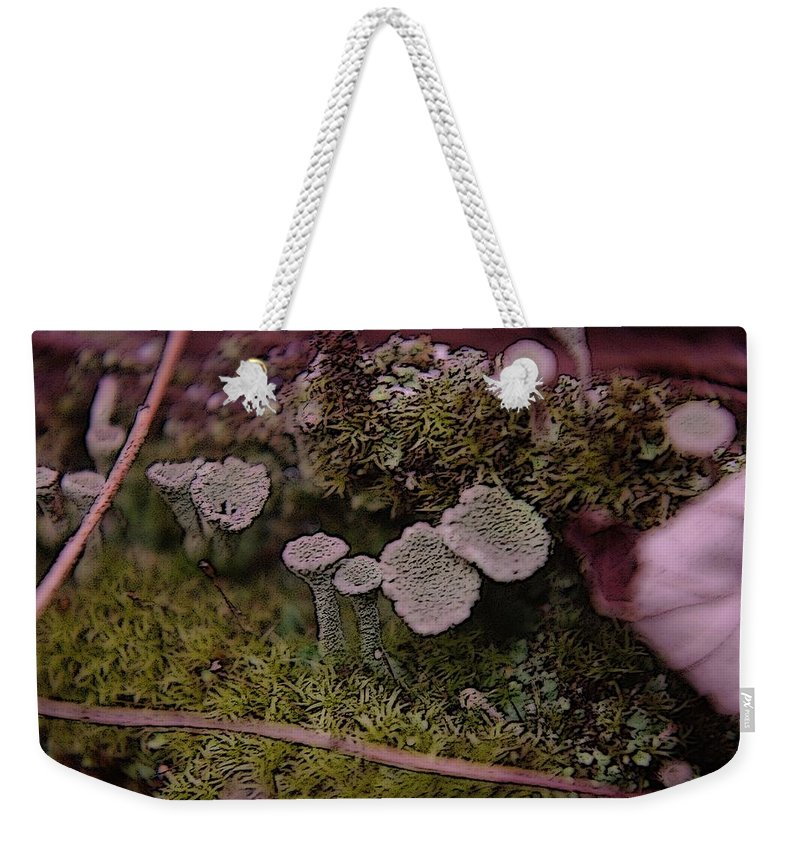 Mushrooms Weekender Tote Bag featuring the photograph Tiny Mushrooms by Jeff Swan