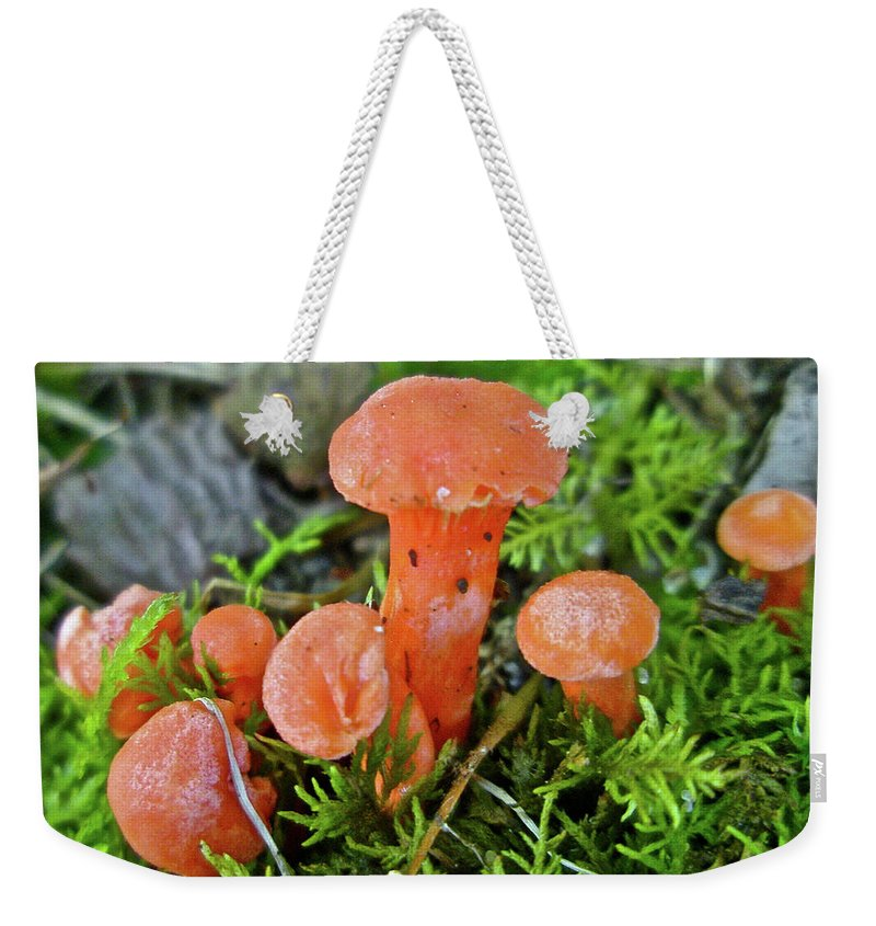Mushroom Weekender Tote Bag featuring the photograph Tiny Orange Mushrooms In Moss by Mother Nature