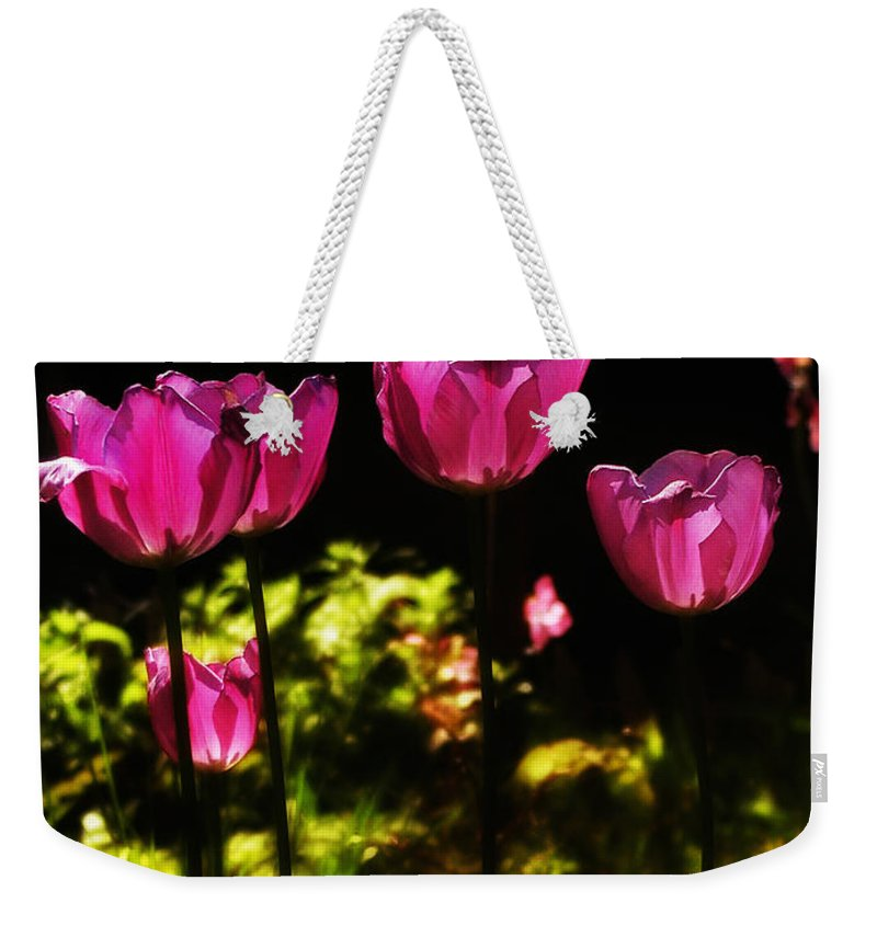 Tulips Weekender Tote Bag featuring the photograph Tiptoe Through The Tulips by Bill Cannon