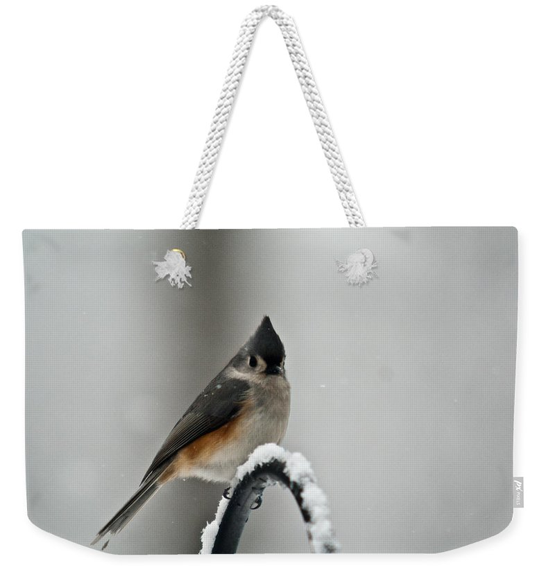 Tufted Weekender Tote Bag featuring the photograph Titmose On Arch by Douglas Barnett
