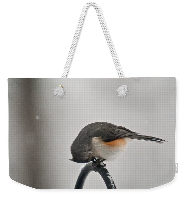 Tufted Weekender Tote Bag featuring the photograph Titmouse Cracking Seed by Douglas Barnett