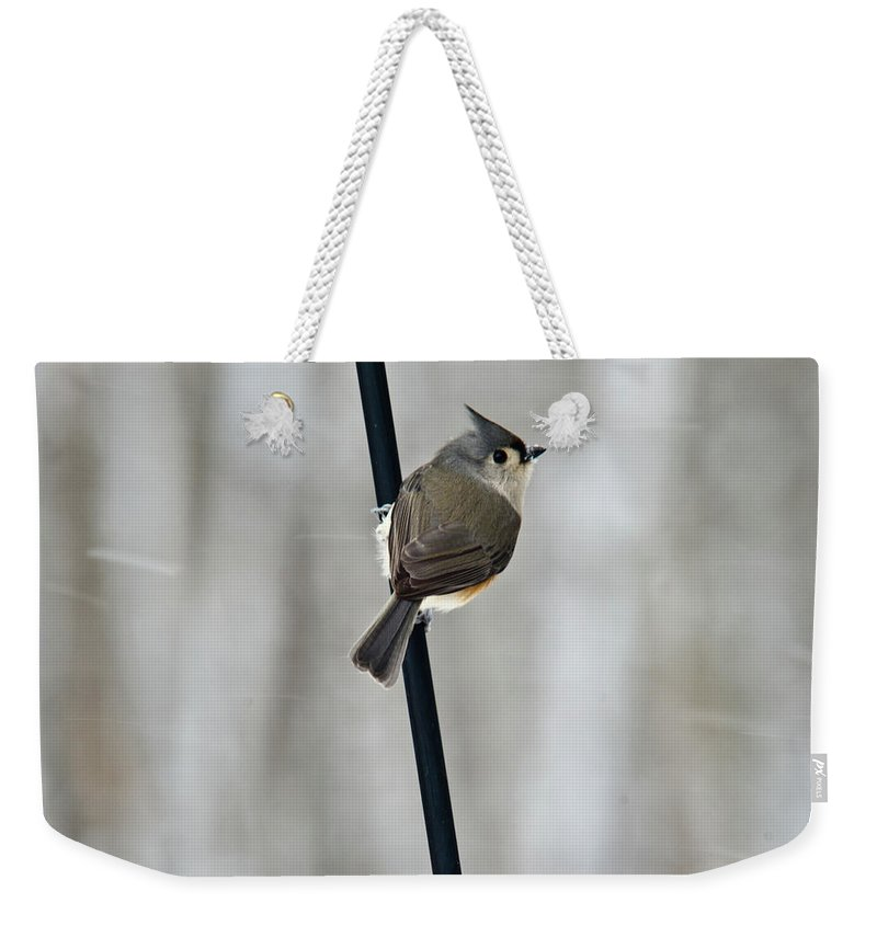 Titmouse Weekender Tote Bag featuring the photograph Titmouse In A Snowstorm by Douglas Barnett