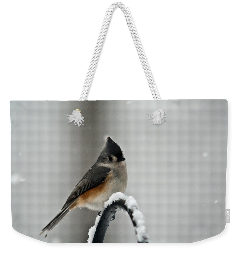 Titmouse Weekender Tote Bag featuring the photograph Titmouse In The Snow by Douglas Barnett